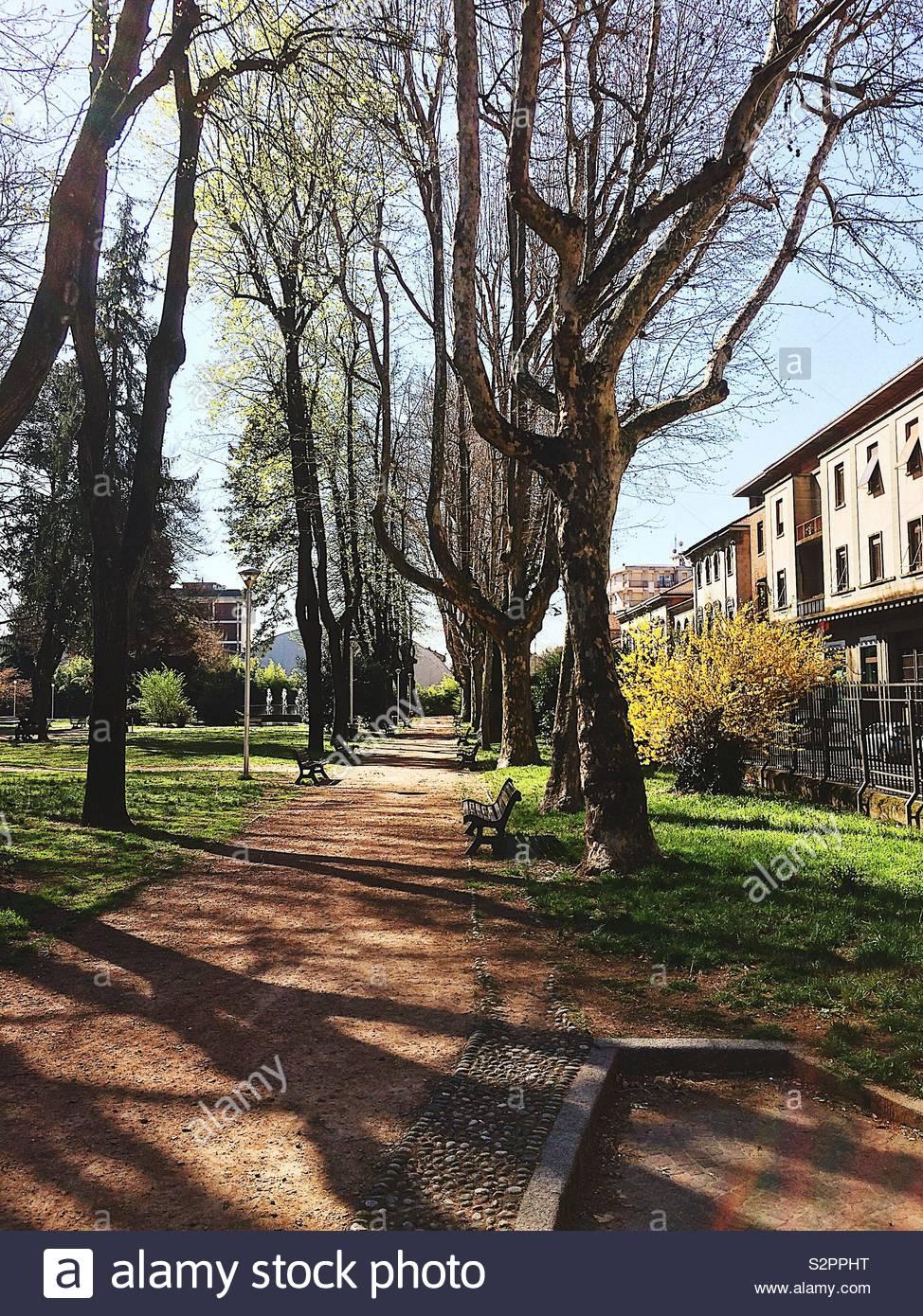 Einen Stadtpark. Fast Frühling Stockbild