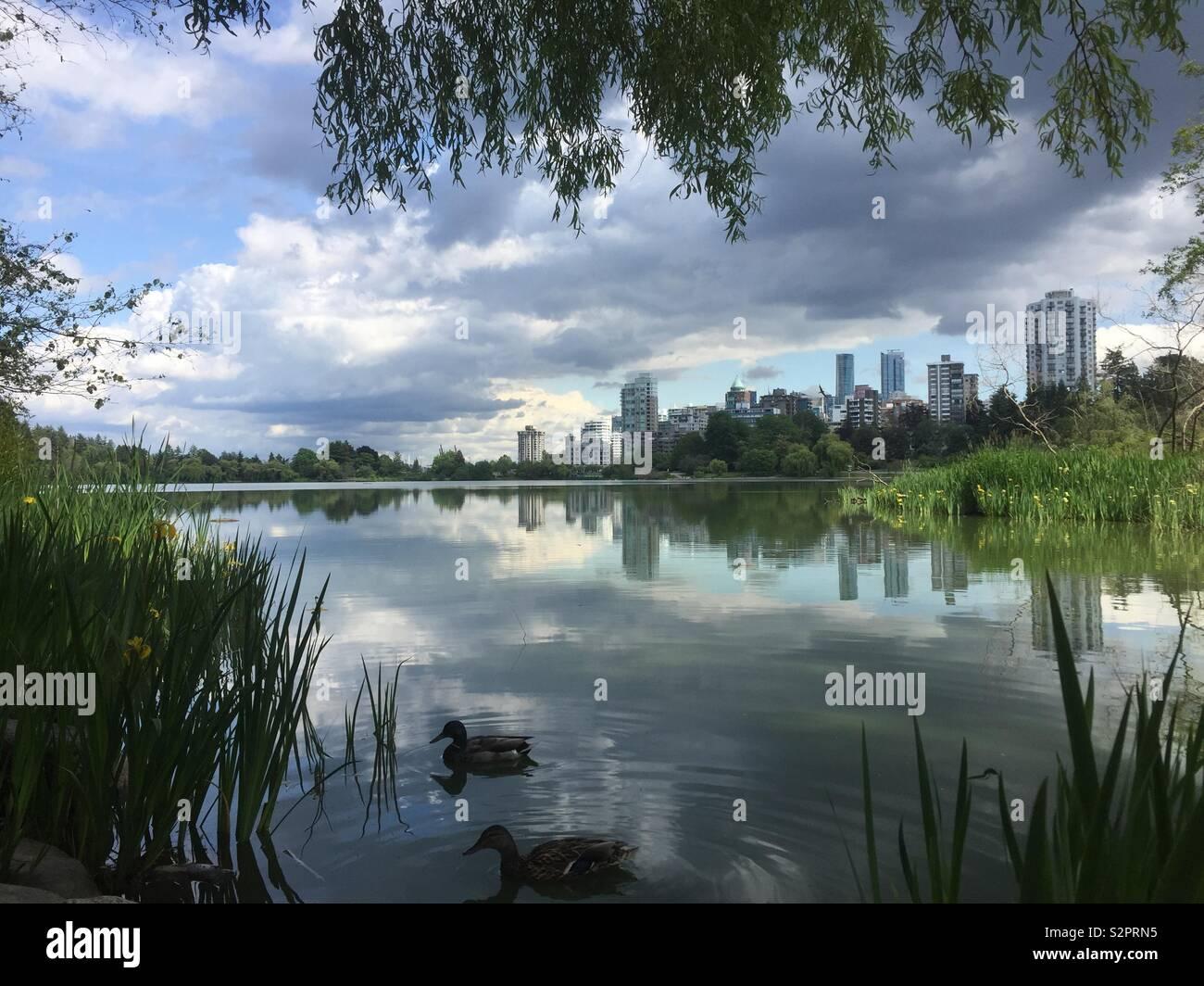 Lost Lagoon im Stanley Park, Vancouver, Kanada Stockbild
