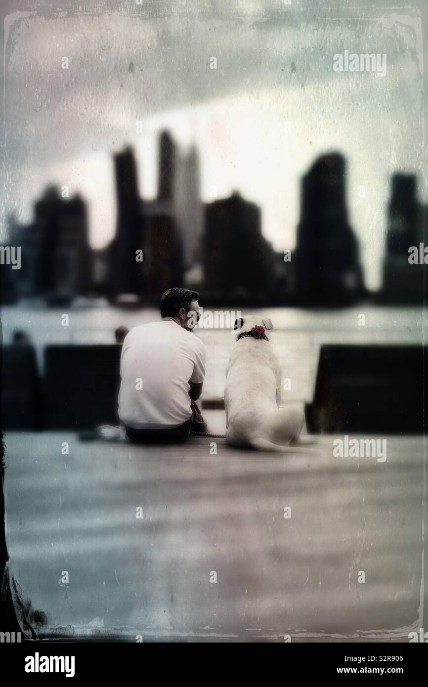Mittleres Alter Mann sitzt mit seinem Hund durch den East River beobachten Manhattan Midtown Stadtbild Stockfoto