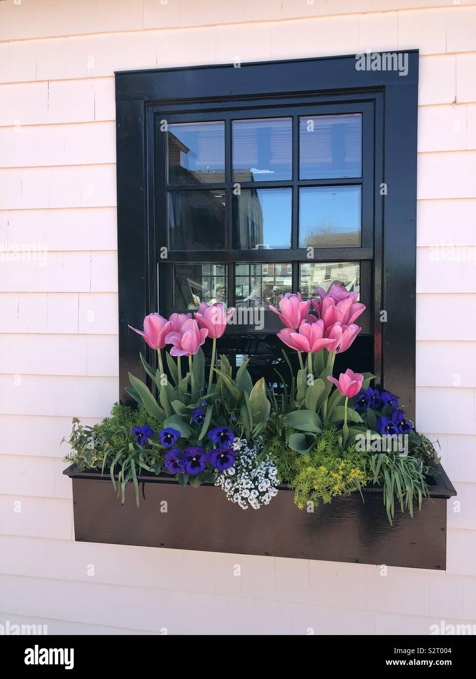Berühmt Fenster Blumenkasten Stockfotos & Fenster Blumenkasten Bilder - Alamy #SX_28