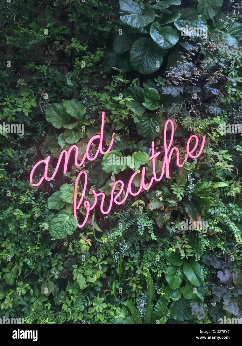 Vergessen Sie nicht zu atmen Stockfoto