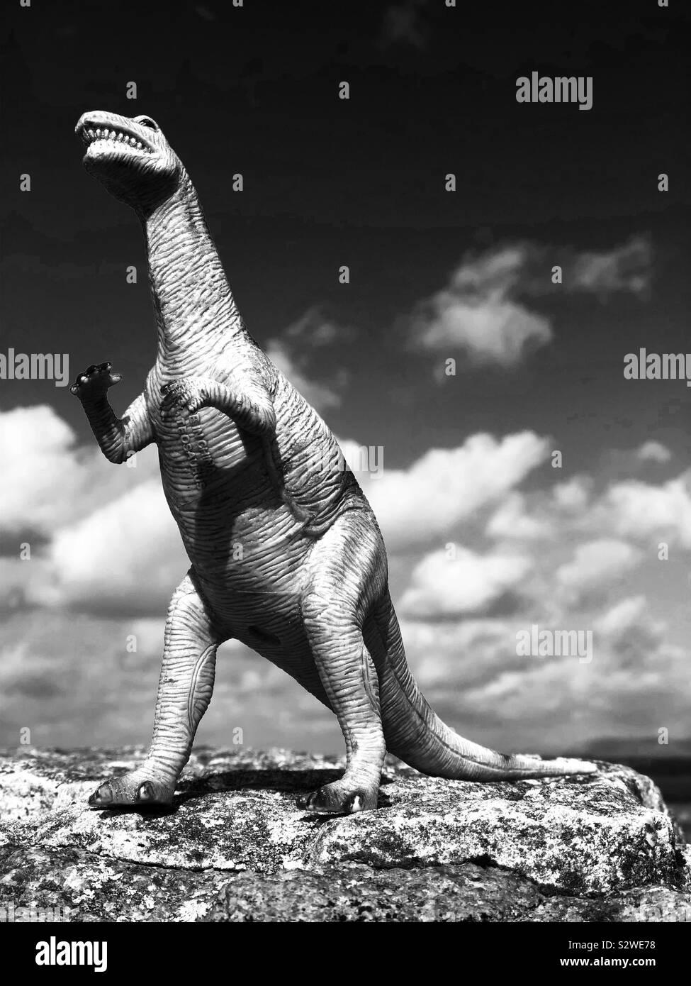 T-Rex steht auf einem Felsen Stockfoto