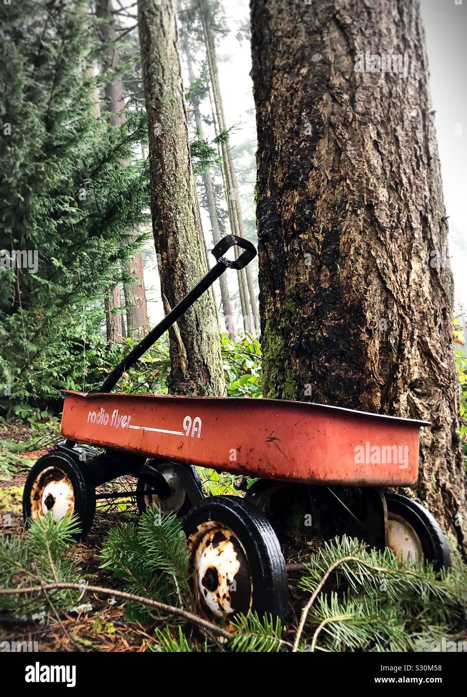 Ein altes Radio Flyer Wagen gegen einen Baum in einem Wald. Stockfoto