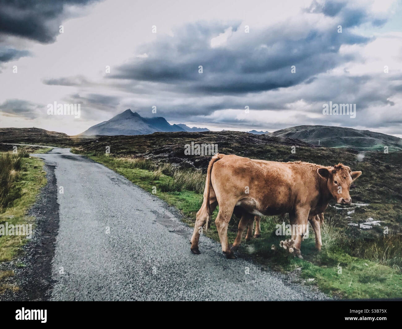 Highland Straßen Stockfoto
