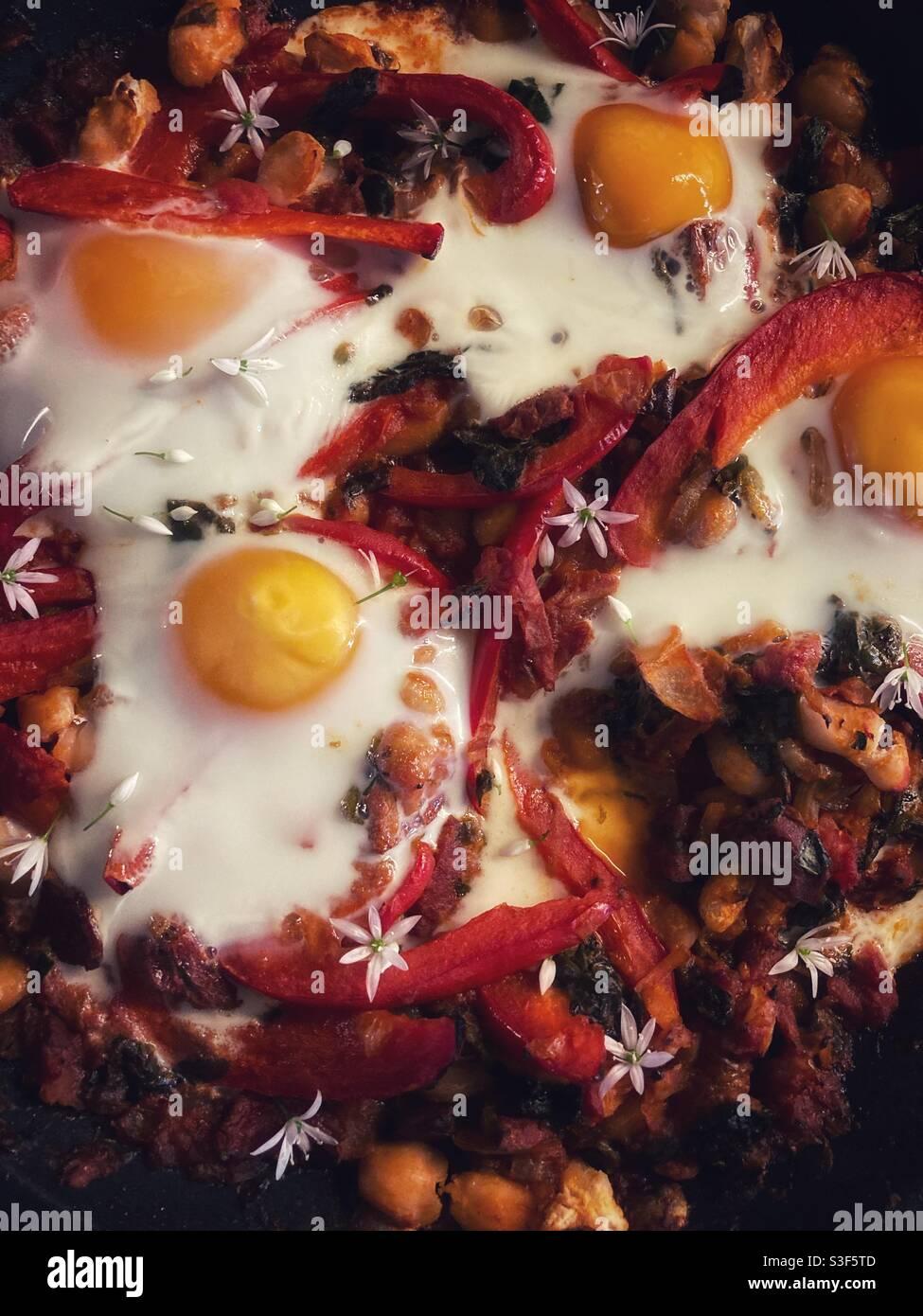 Nahaufnahme Foto von Zigeunereiern Gericht / Teller von Essen mit Tomatensauce mit Bohnen und roten Paprika in Scheiben geschnitten Garniert mit gebackenen Eiern und wilden Knoblauchblüten Stockfoto