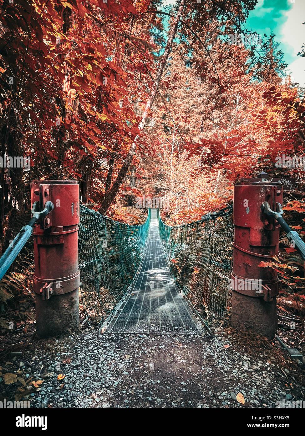Hängebrücke Stockfoto