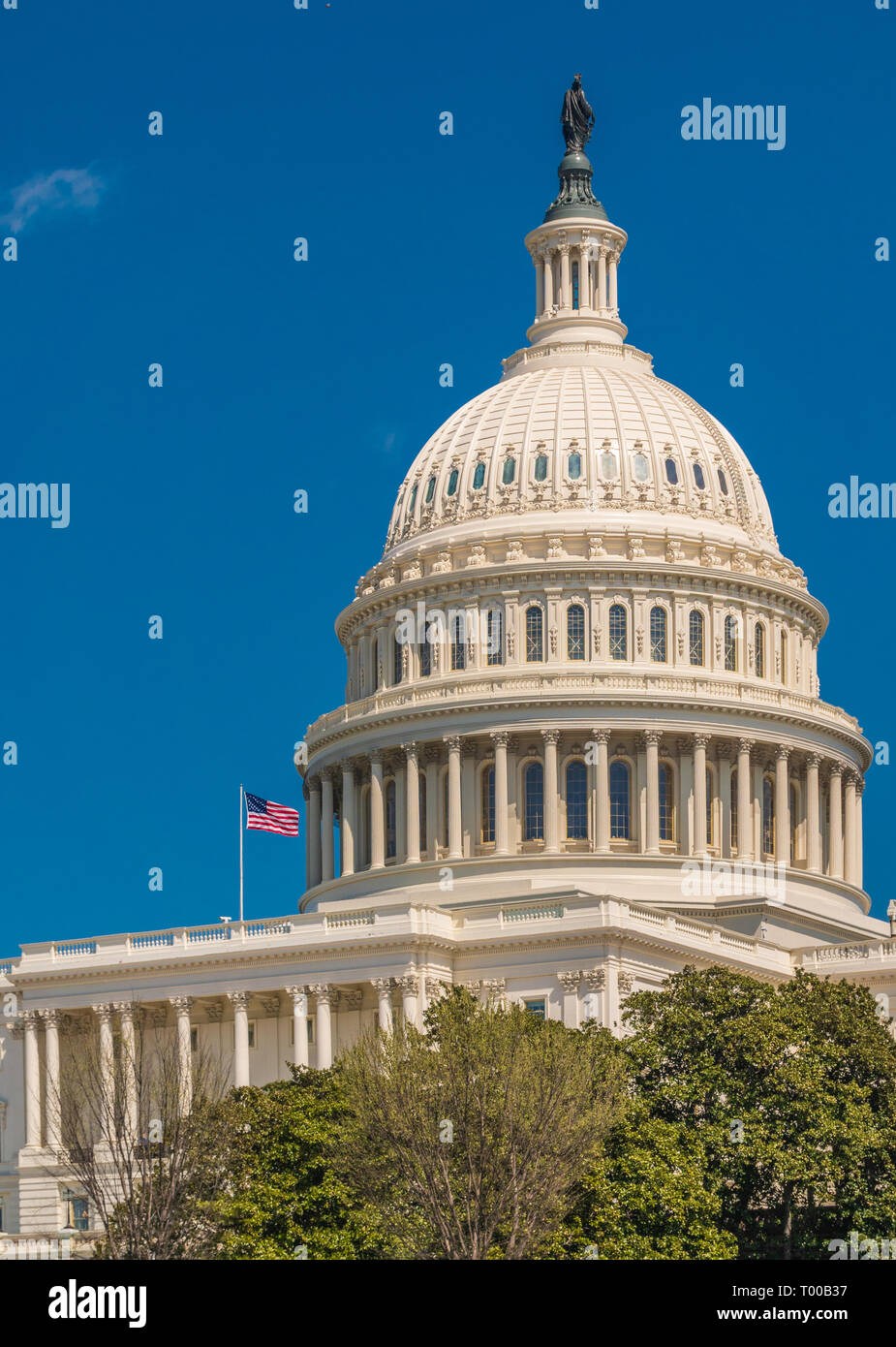 United States Capitol Stockbild
