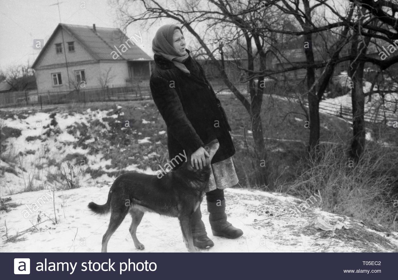 hund kommt in frau
