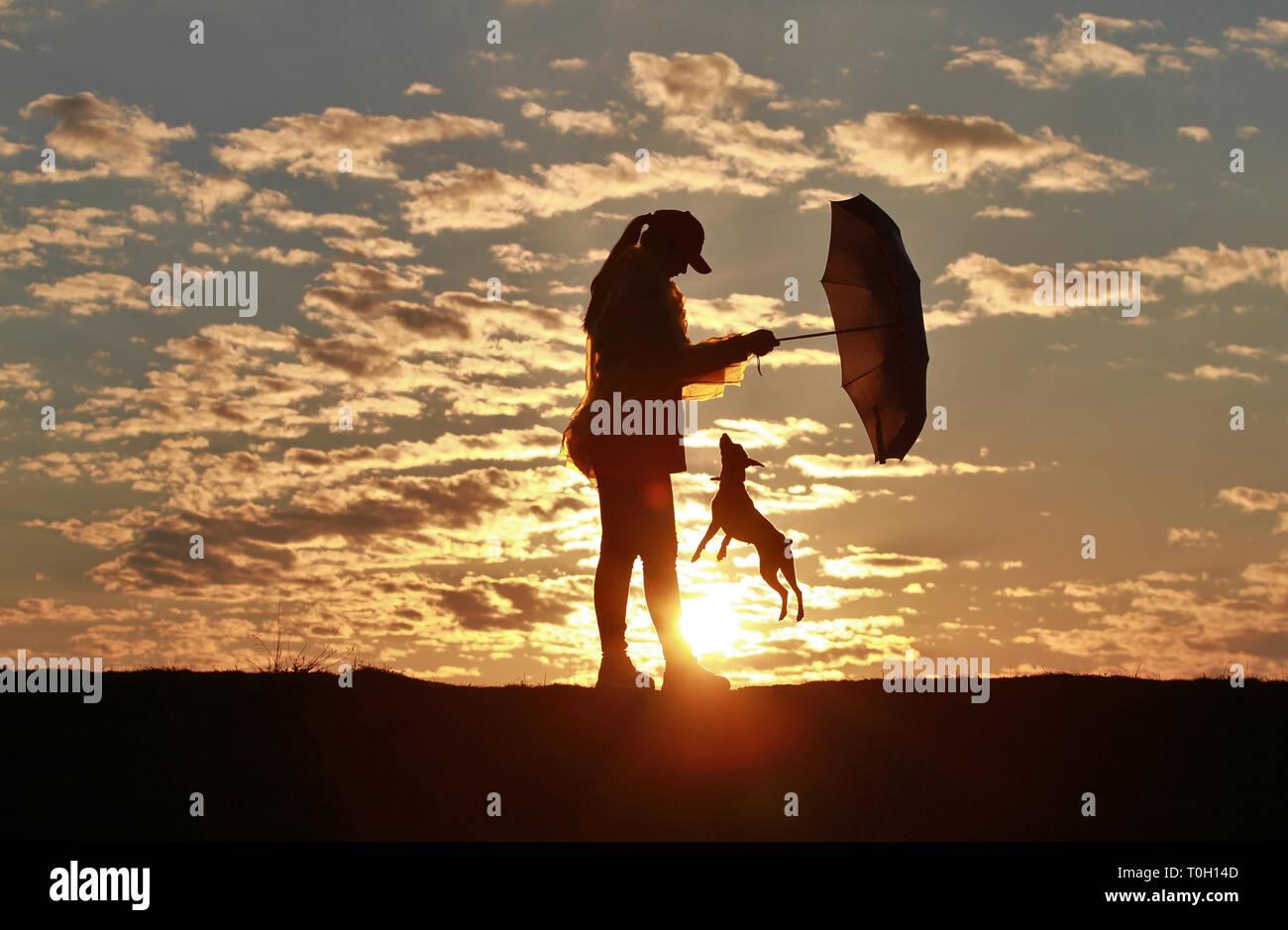 Silhouette Glückliches Mädchen Mit Schirm Und Hund Pinscher Vor Dem