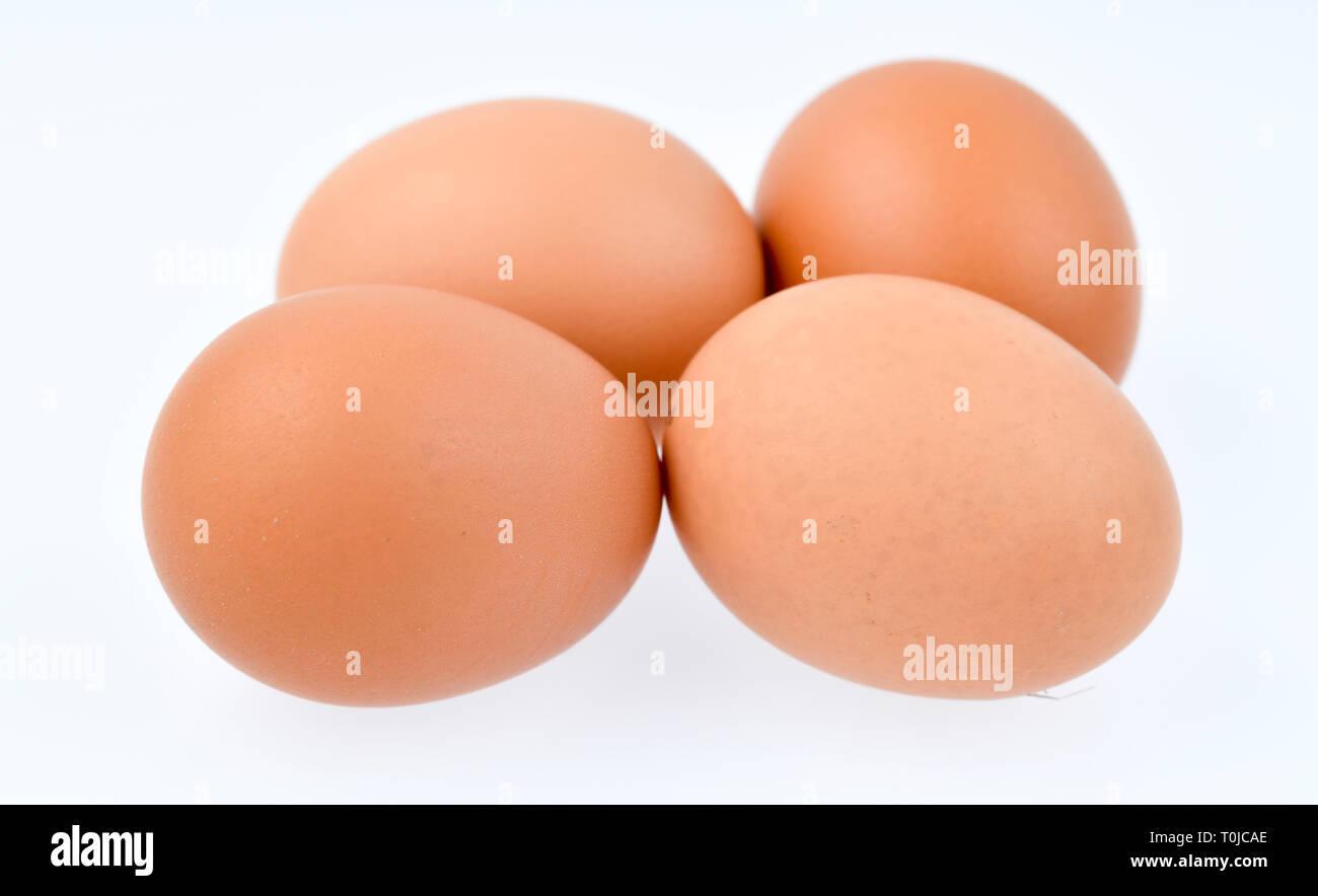 Eier, Studio eintritt, Eier, Studioaufnahme Stockbild