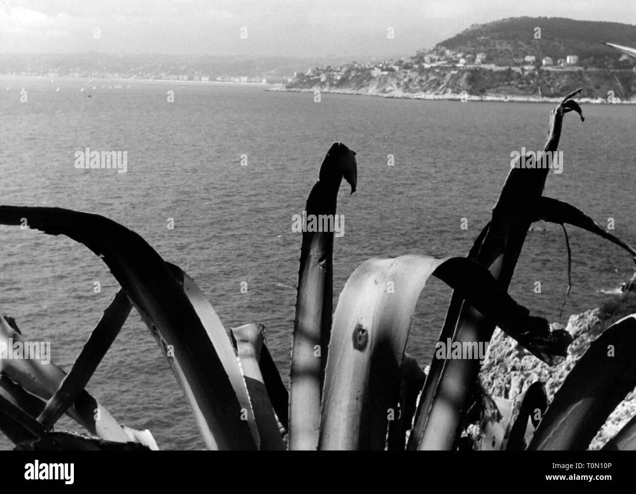 Geographie/Reisen, Monaco, Blick über das Meer, 1950er Jahre, Additional-Rights - Clearance-Info - Not-Available Stockbild
