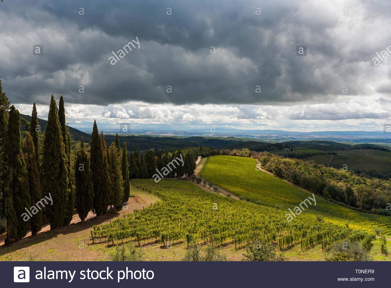 Paisaje de Chianti, Italien Stockbild