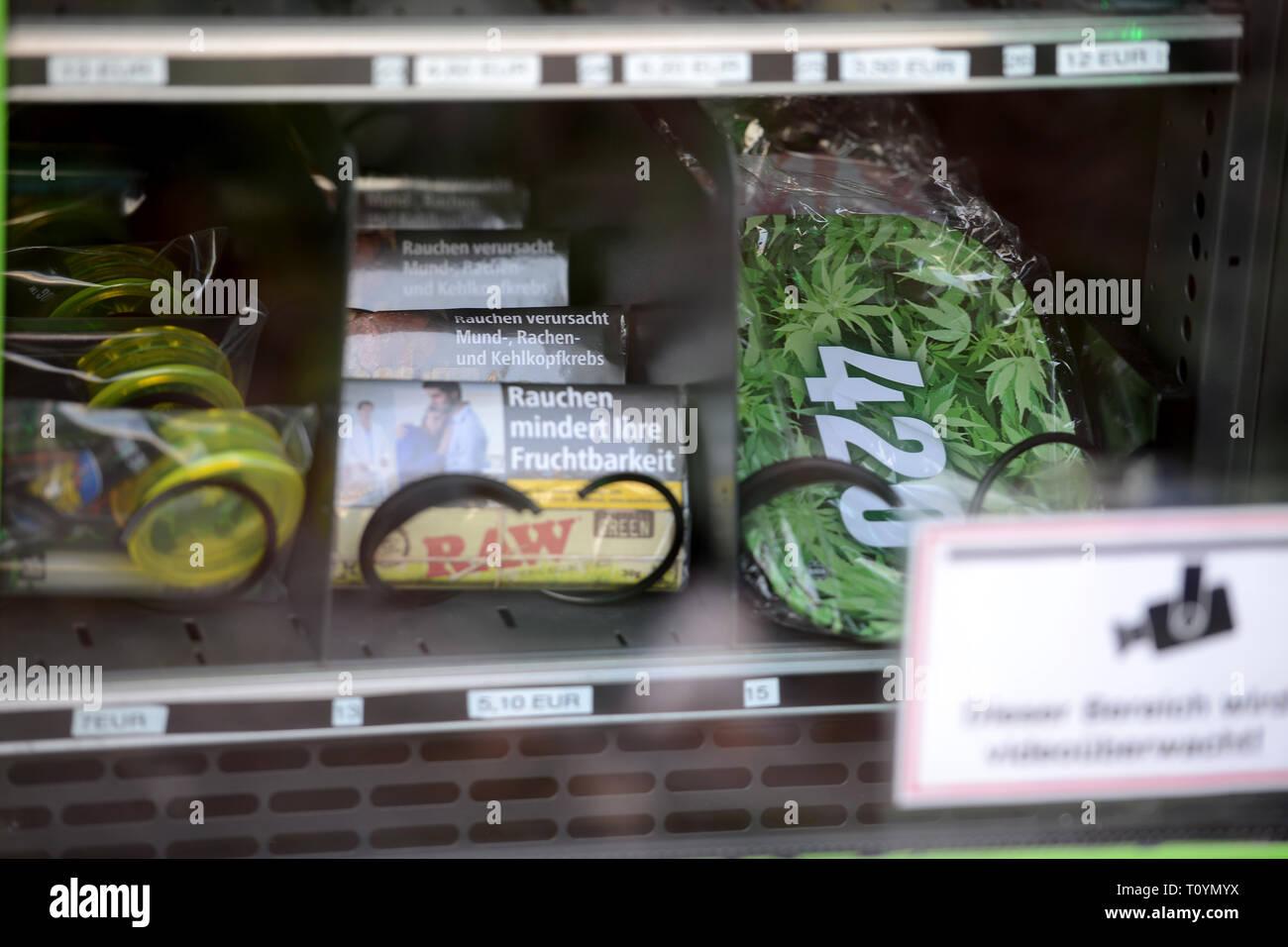 Trier, Deutschland. 21 Mär, 2019. Gepresst und getrocknet Cannabis Blüten im Beutel sowie Perlen in Kunststoffkästen sowie alle Arten von Zubehör für den Kauf in einem Cannabis Automaten verfügbar sind. Diese sind Hanf Produkte mit dem Wirkstoff CBD (Cannabidiol), die als kaum psychoaktive zu sein. Credit: Harald Tittel/dpa/Alamy leben Nachrichten Stockfoto