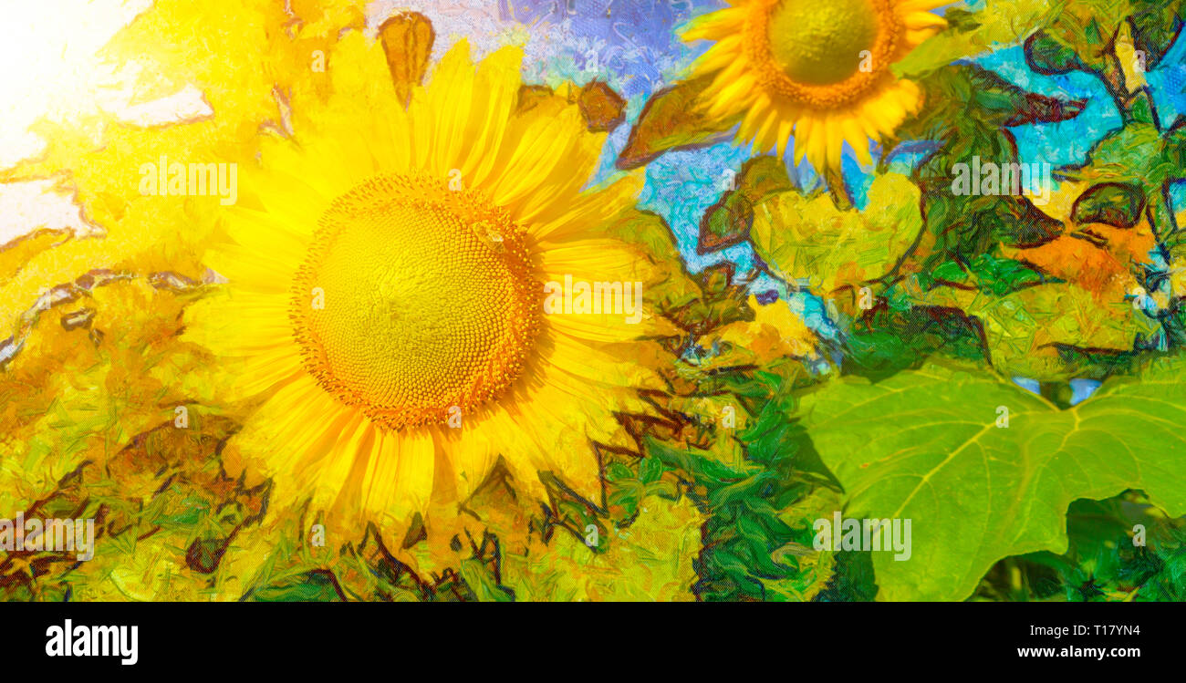 Sonnenblume Malerei aus echten Blumen Stockbild
