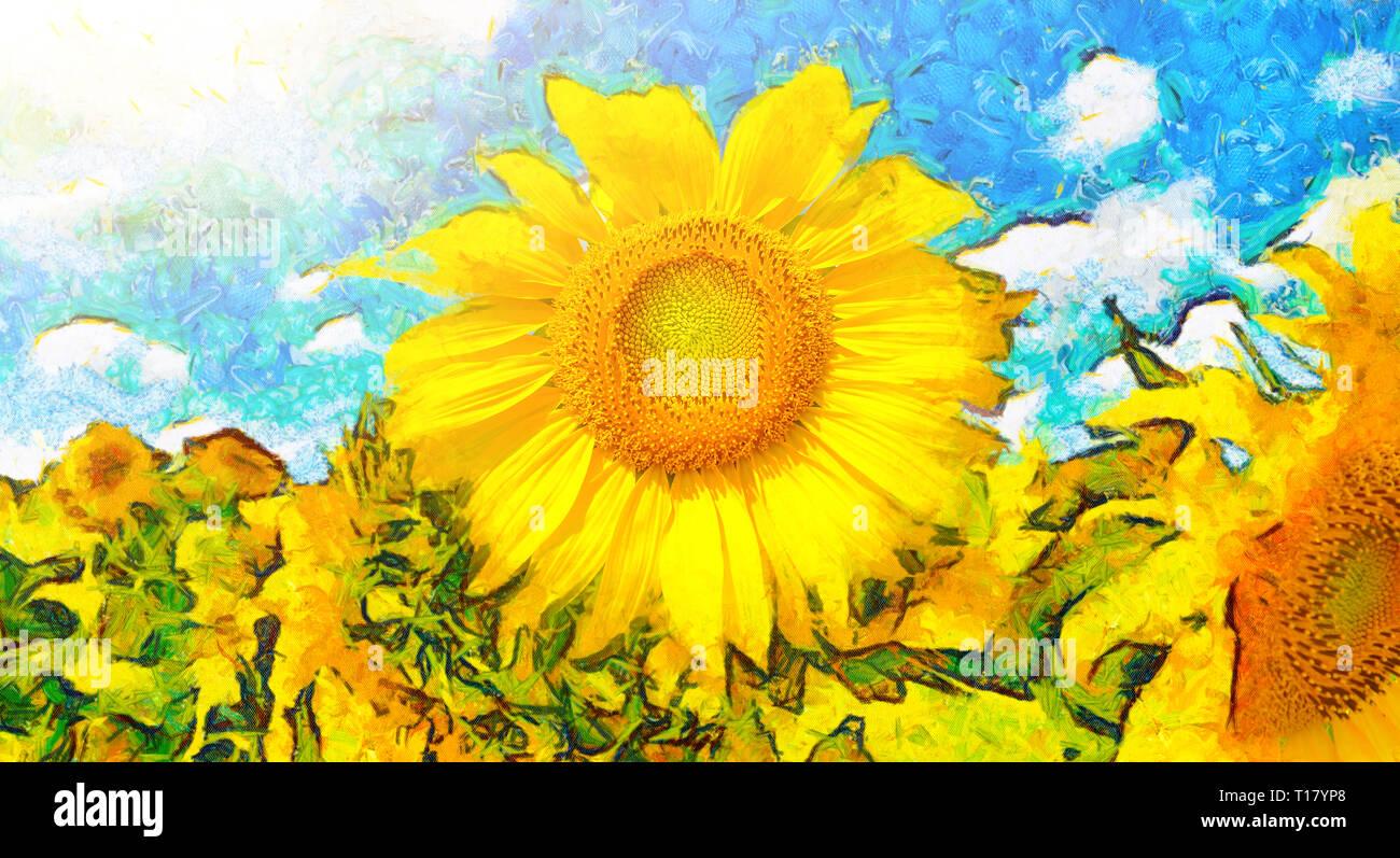 Sonnenblume Malerei. Hintergrund der sonnige Sonnenblumen. Panoramablick auf die malerischen Zeichnung der gelben Feld Blumen. Stockbild