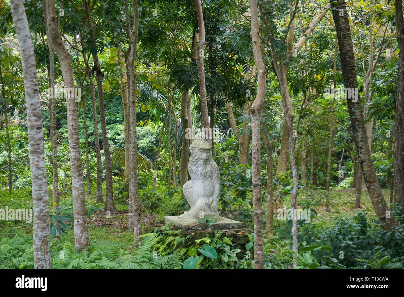 Tropisch Platzmatte Üppiger Regenwald 4er aus Stoff