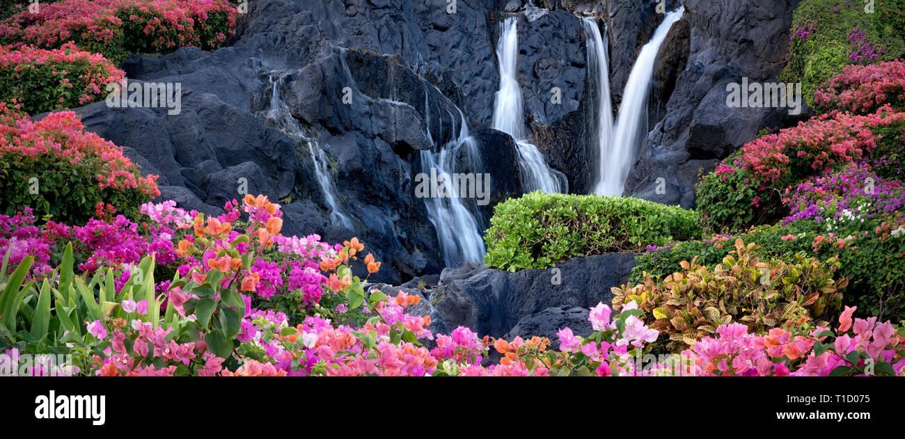 Bougainvillea-Blüten und Wasserfall im Garten in Kauai, Hawaii Stockbild