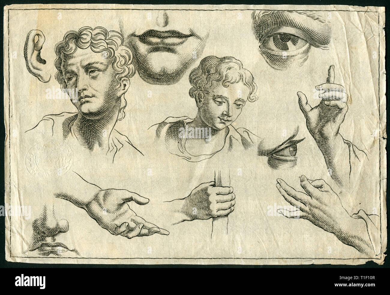 Historische Zeichnung der Teile der Körper, Kopf, Auge, Mund, Kinn und Hand, Kupferstich von etwa 1700, Artist's Urheberrecht nicht gelöscht werden Stockbild