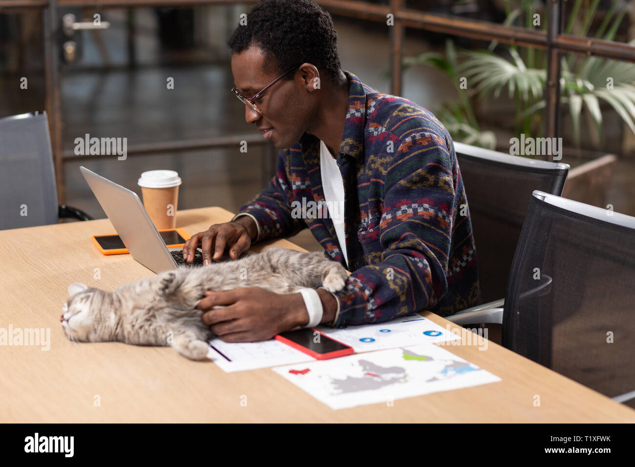 Katze auf dem Inhaber pc-Tisch Stockbild