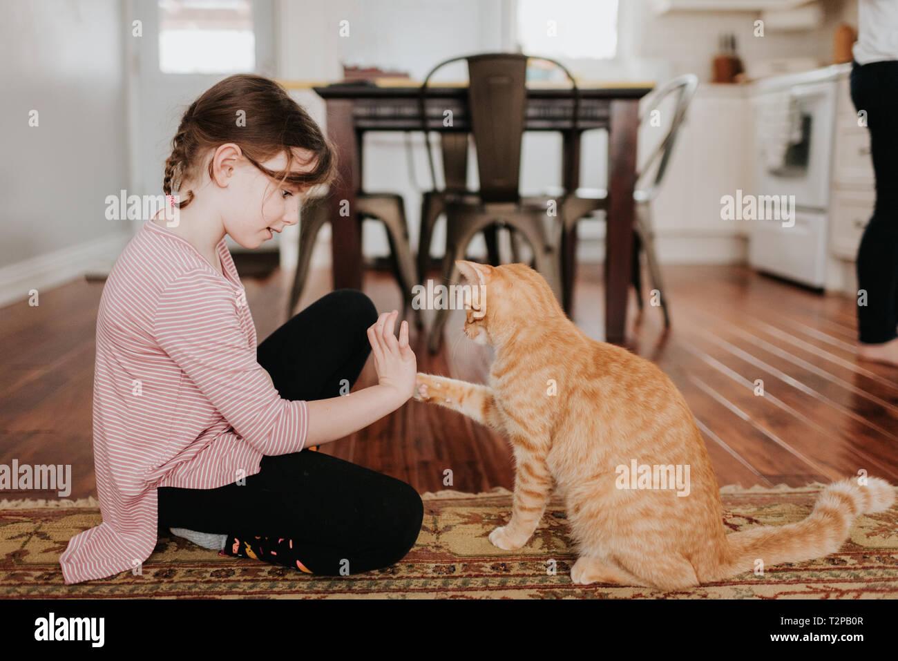 Mädchen spielen mit Katze zu Hause Stockfoto