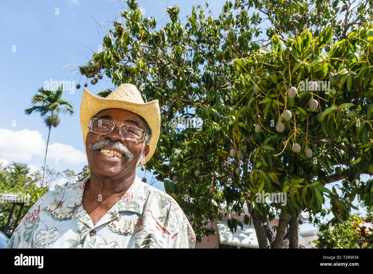 Miami Coconut Grove Florida Black Mann Mango Südfrucht Baum Strohhut lächelnd Schnurrbart senior Stockbild