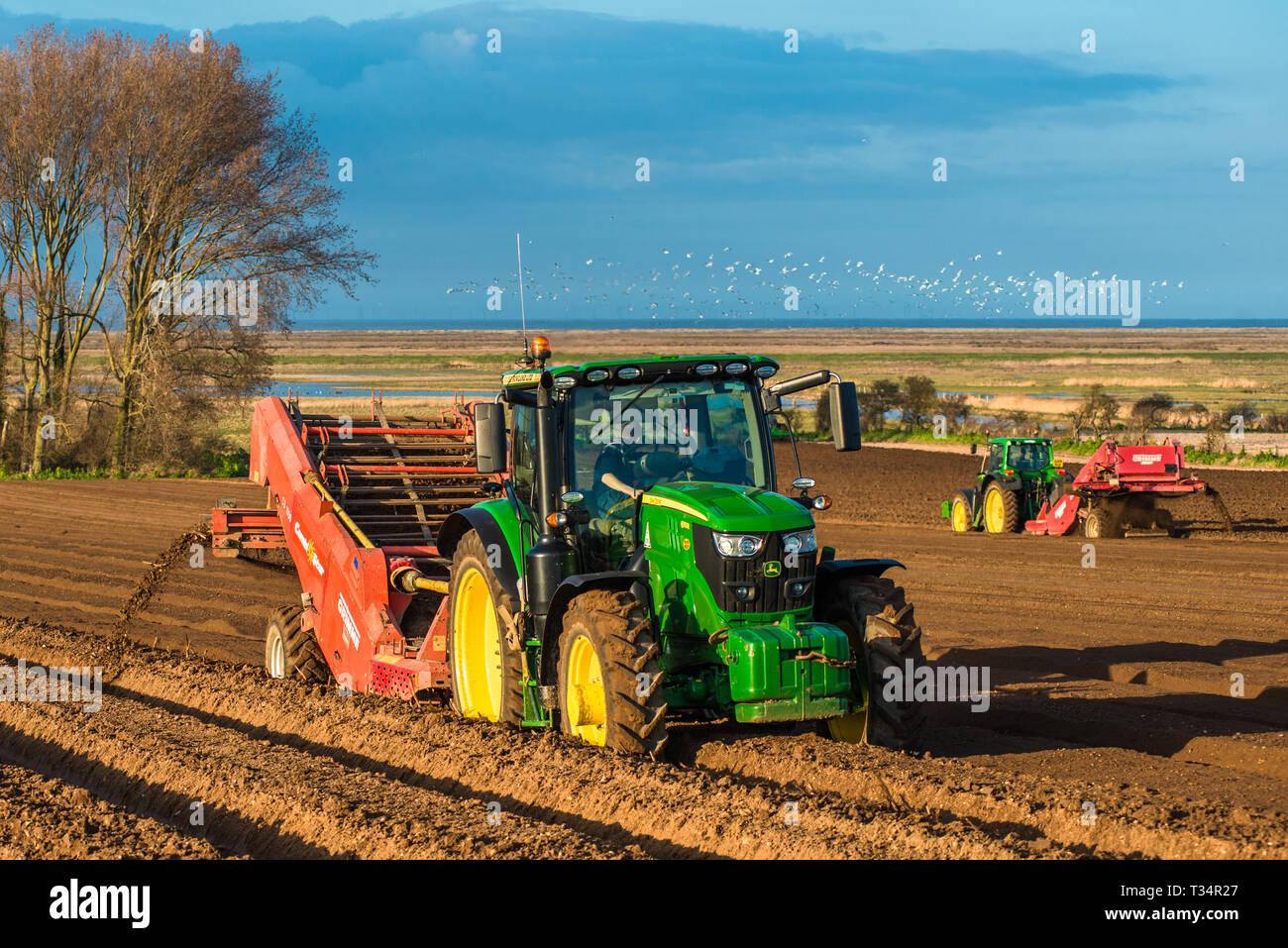 Traktoren, die tiefes Bett Gestaltung durch Aussaat die Felder in den frühen Quellen Zeit in Burnham Overy in Nord Norfolk, East Anglia, England, Großbritannien Stockfoto