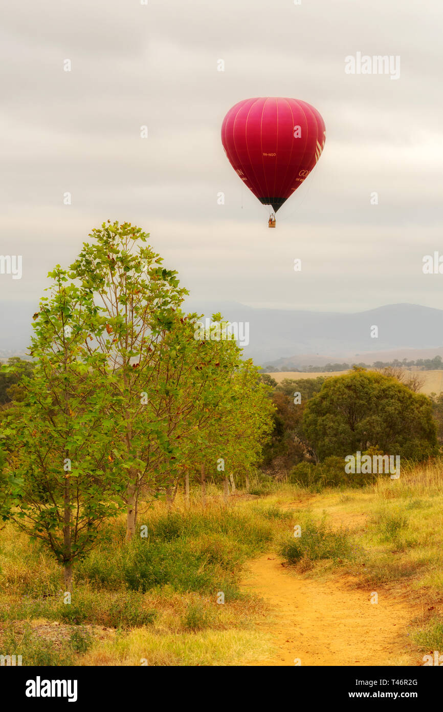Canberra, 13. März 2019, mit dem Heißluftballon über bunte Felder auf einem nebligen Morgen fliegen. Stockfoto