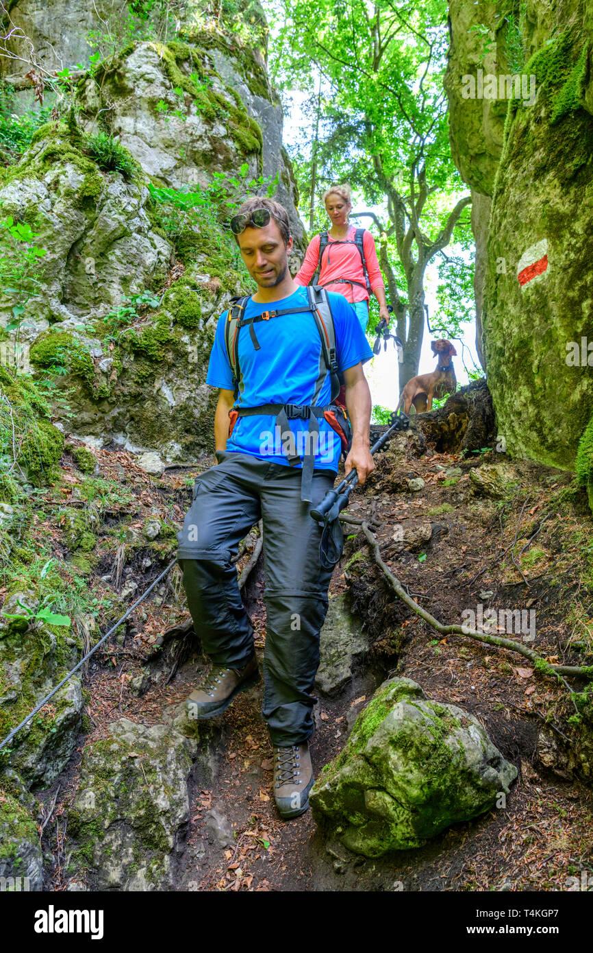 Wandern auf eine spannende und anspruchsvolle Trail im Wald Stockbild