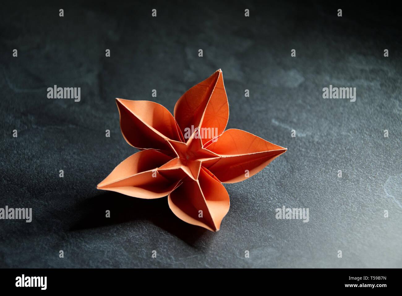 Origami Orchid Flower Blossom - Papier Kunst auf strukturierten Hintergrund Stockfoto