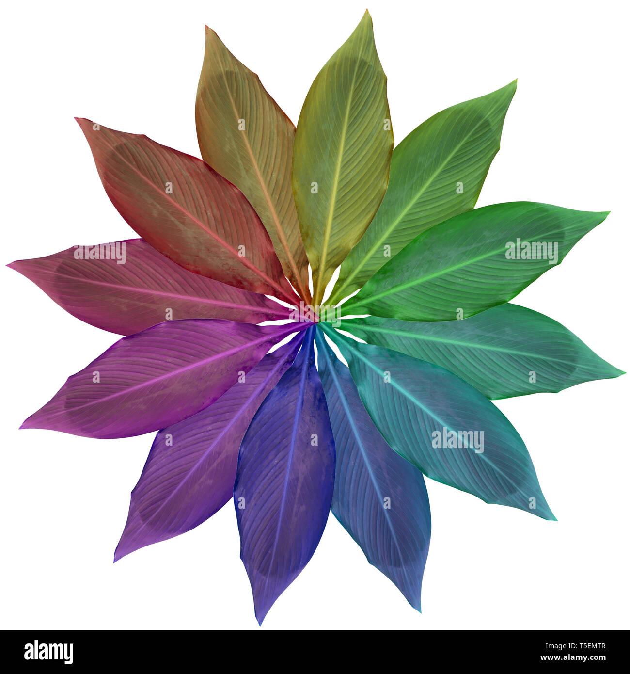 Digital verbesserte Bild von 12 Rainbow farbige Blätter in einer kreisförmigen Anordnung Stockbild