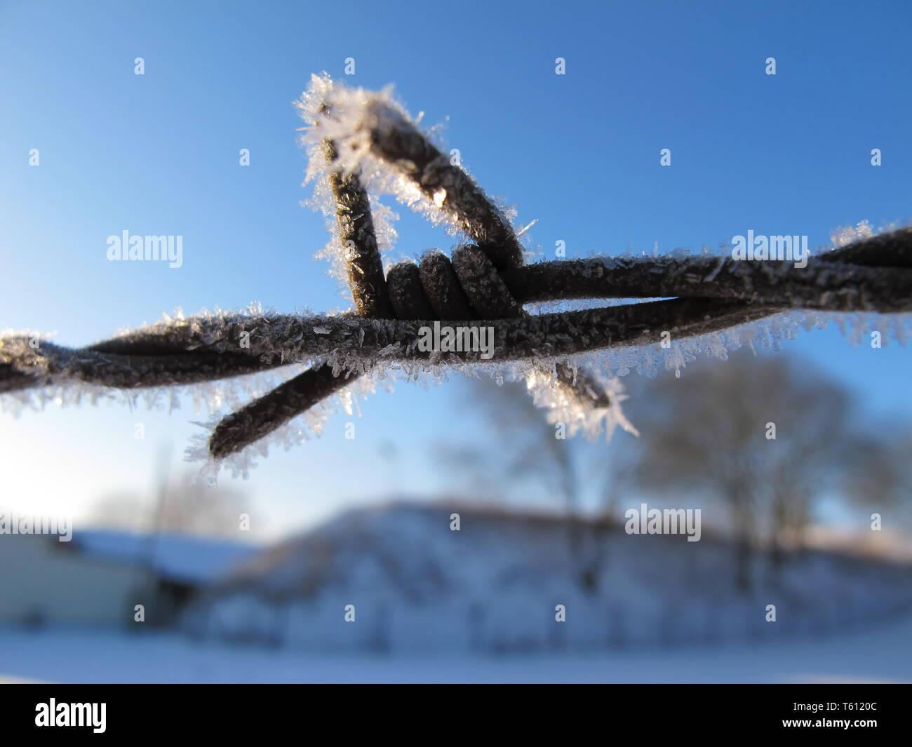 Ein Frost bedeckt Stacheldraht zaun vor einem blauen Himmel Stockfoto