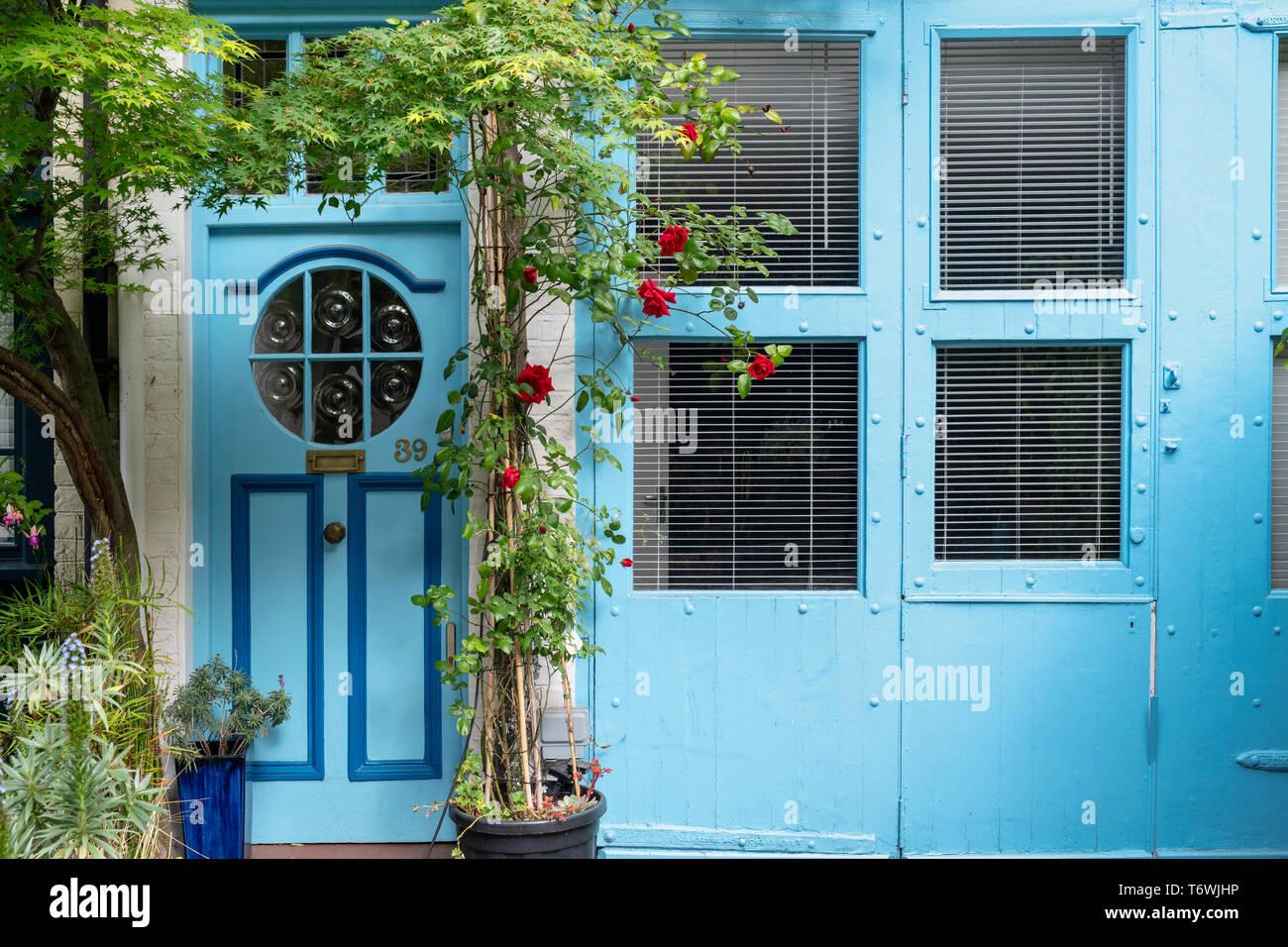 Blaues Haus und rote Rosen in Bathurst Mews, Hyde Park, Bayswater, London, England Stockfoto