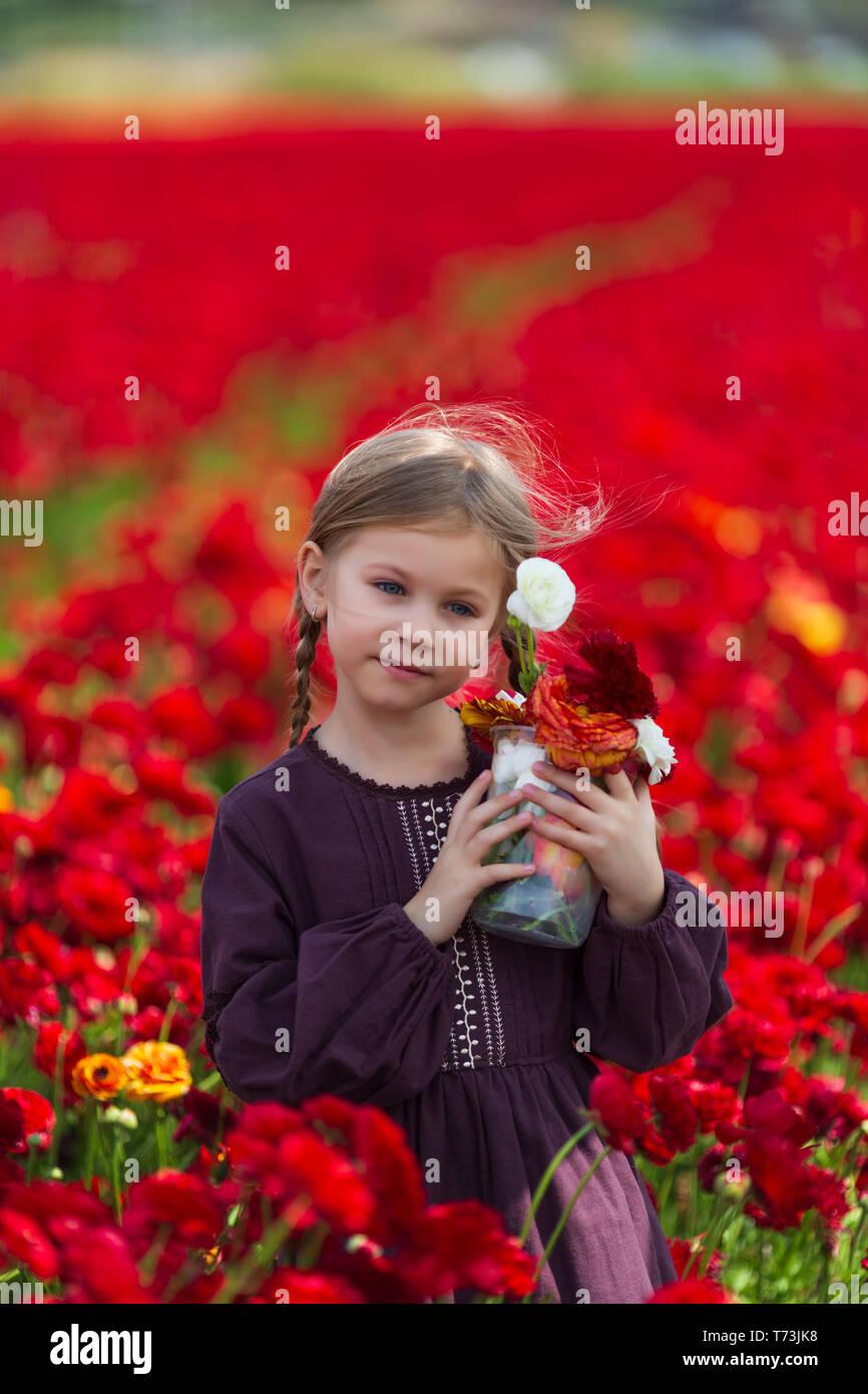 Mädchen in einem Burgund Sommer Kleid Blumen pflücken in der Wiese Stockbild