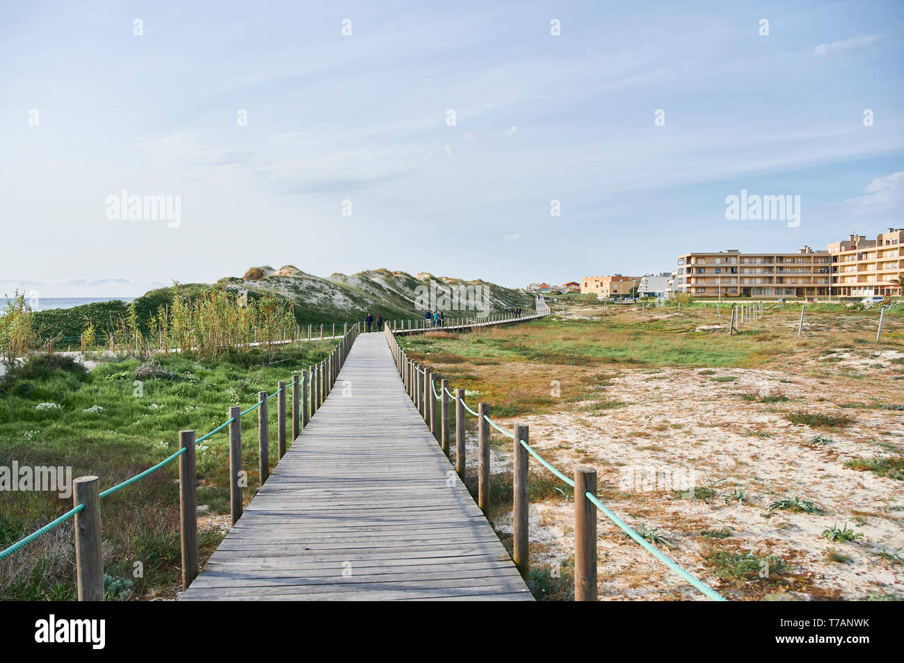 Holz- zu Fuss über die Dünen in Portugal, in der Nähe des Strandes Stockfoto