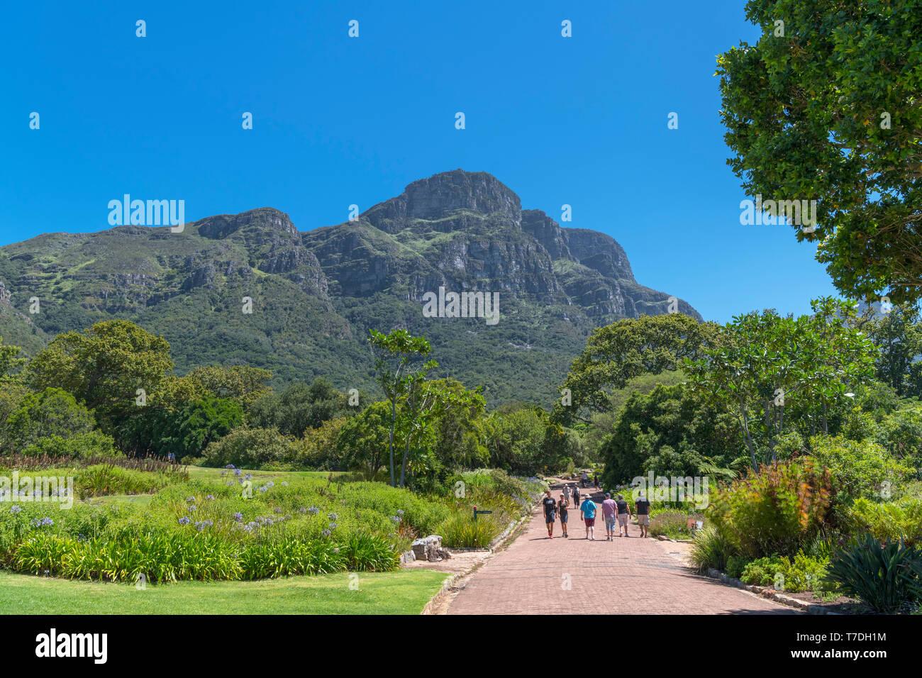 Kirstenbosch National Botanical Garden mit Blick auf die Ostseite des Table Mountain, Cape Town, Western Cape, Südafrika Stockbild