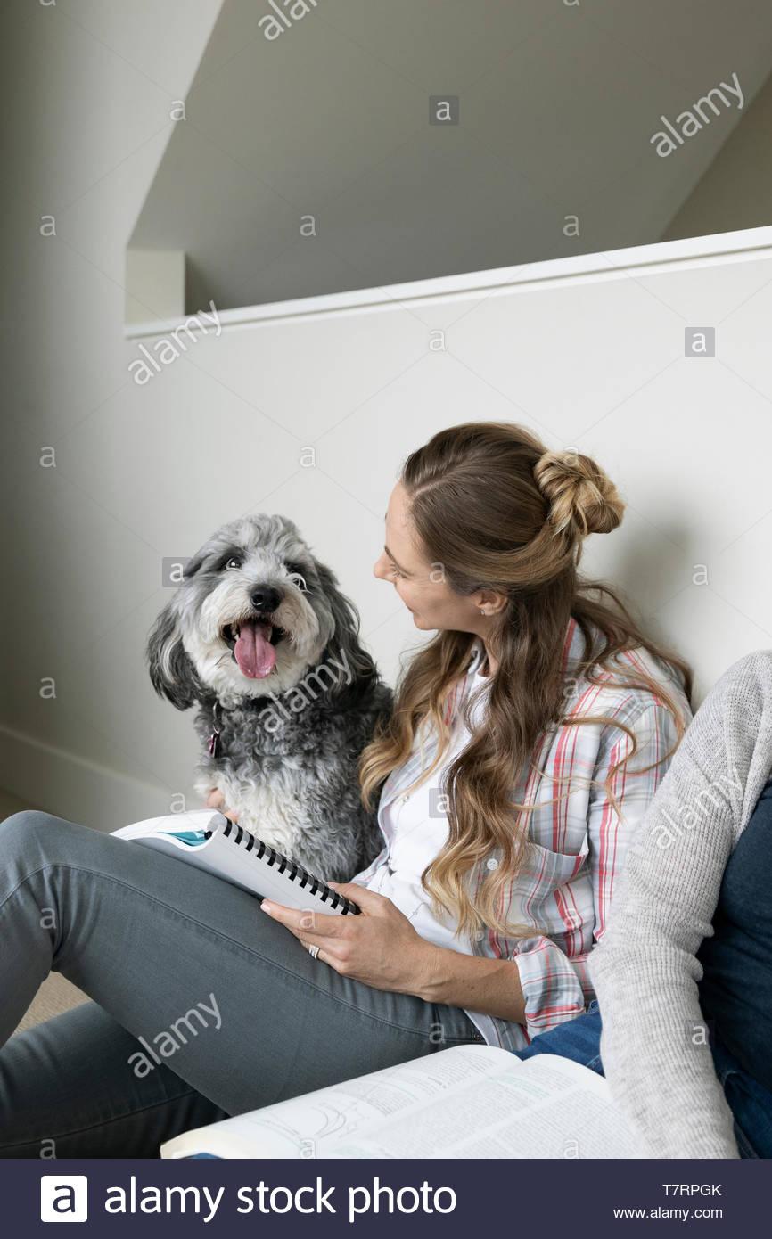 Frau mit Hund, die von zu Hause aus arbeiten Stockbild