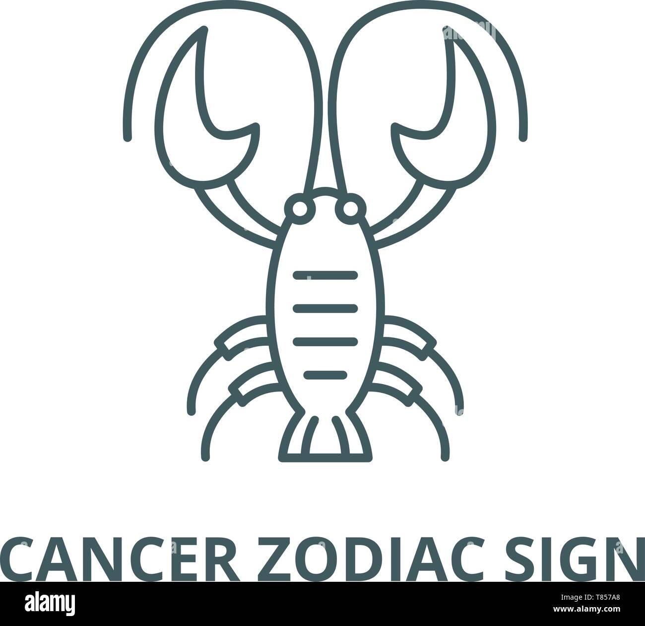 Taurus und Krebs datieren