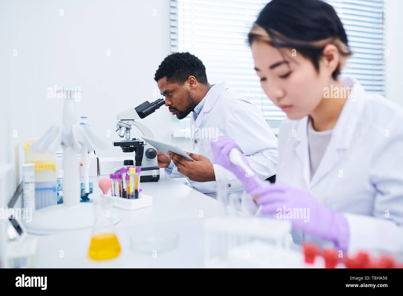 Medizinische Diagnose Spezialisten analysieren Stoffe Stockbild