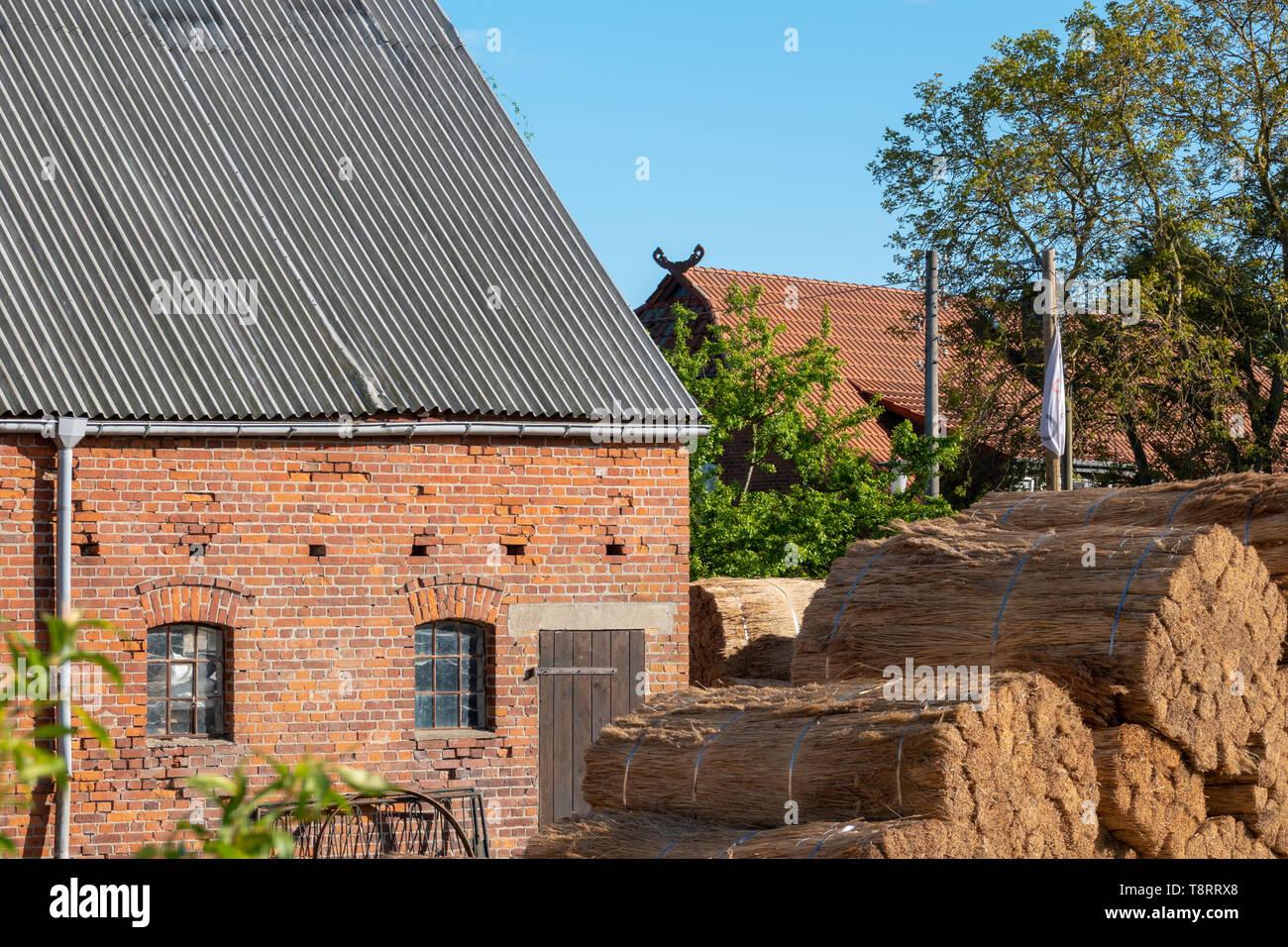 Ein altes Bauernhaus ist neu mit Reed gedeckt Stockfoto