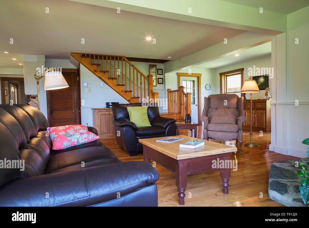 Braunes Leder Sofa und Sessel, Couchtisch Kiefernholz in