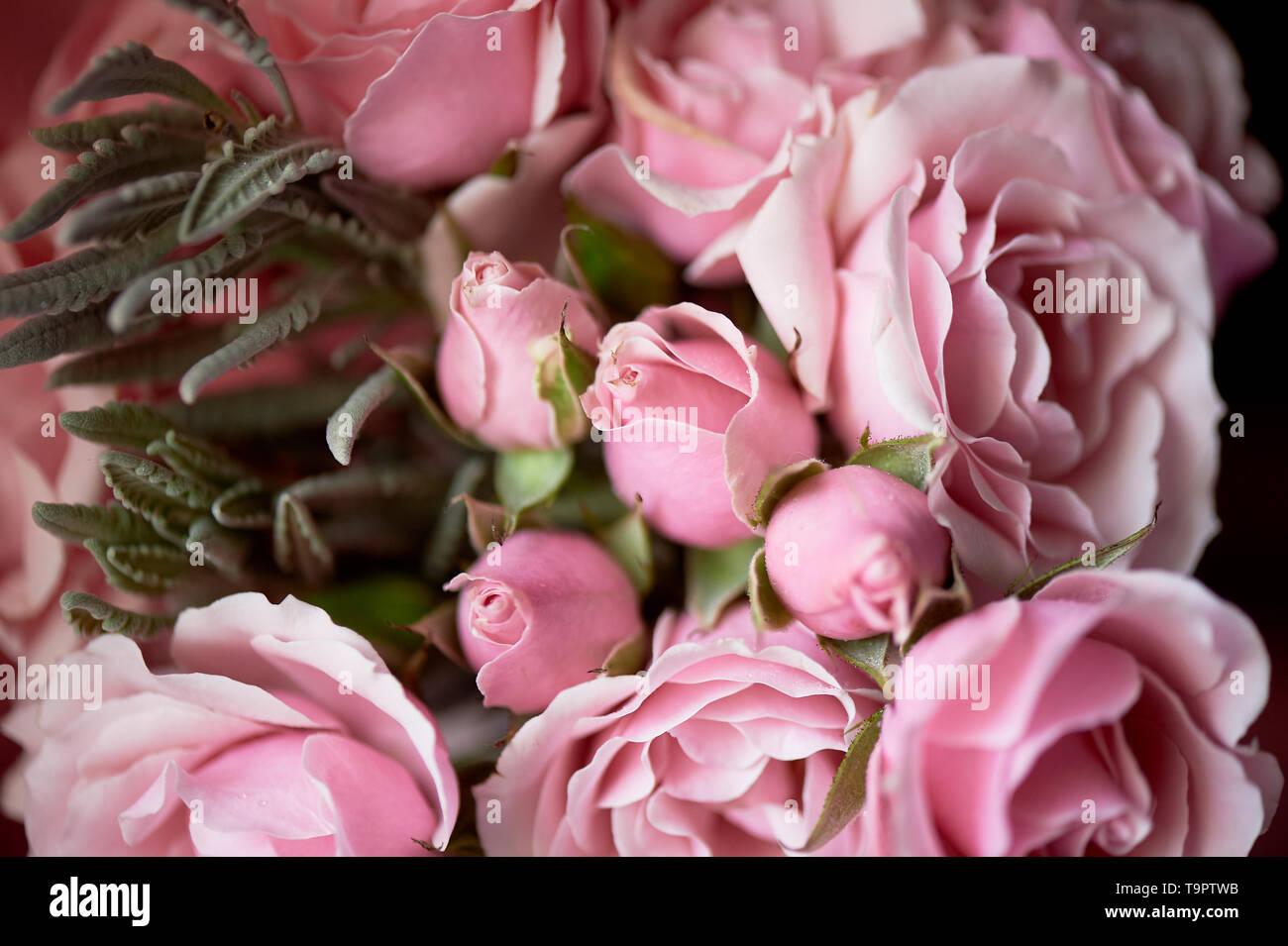 Einen kleinen Blumenstrauß aus Rosen. Hochzeit Floristik. zarten Pastellfarben. Textur Stockbild