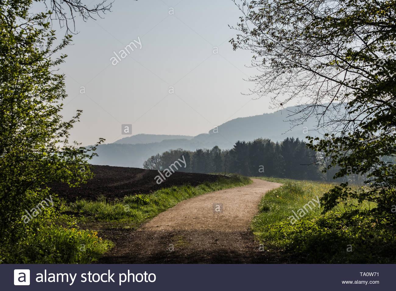Frühling Landschaft mit Weg in die Natur führt. Stockbild