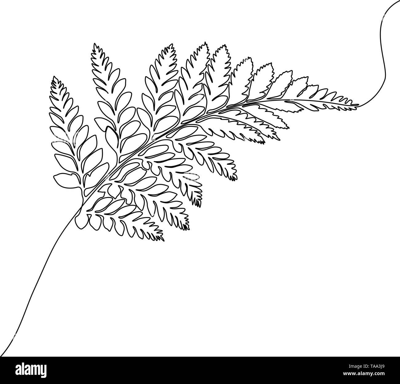 Kontinuierliche eine Strichzeichnung Farn, exotischen und tropischen Pflanzen. Stockbild