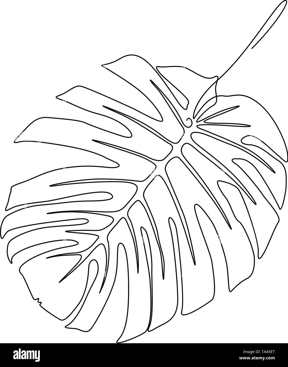 Eine Strichzeichnung monstera Blatt. Kontinuierliche Linie exotische tropische Pflanzen. Stockbild