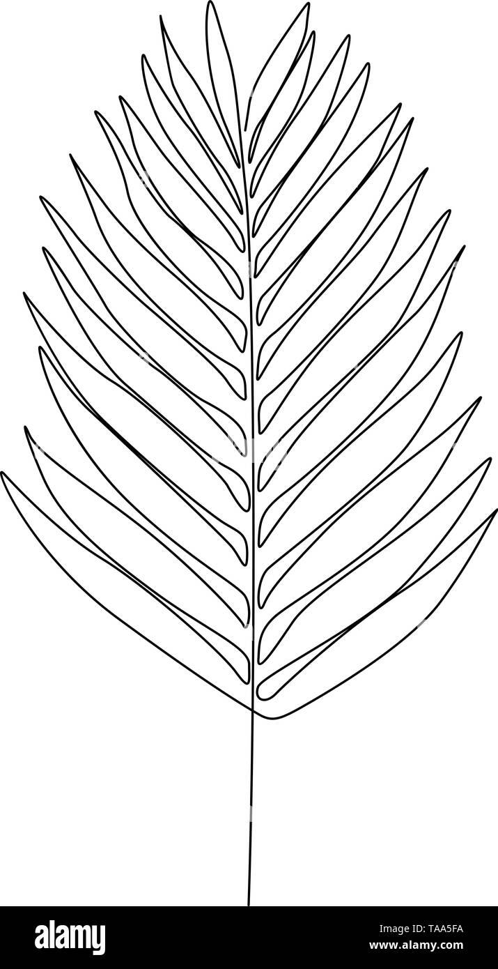 Eine Strichzeichnung Lorbeerblatt. Durchgehende Linie exotische Pflanze. Stockbild