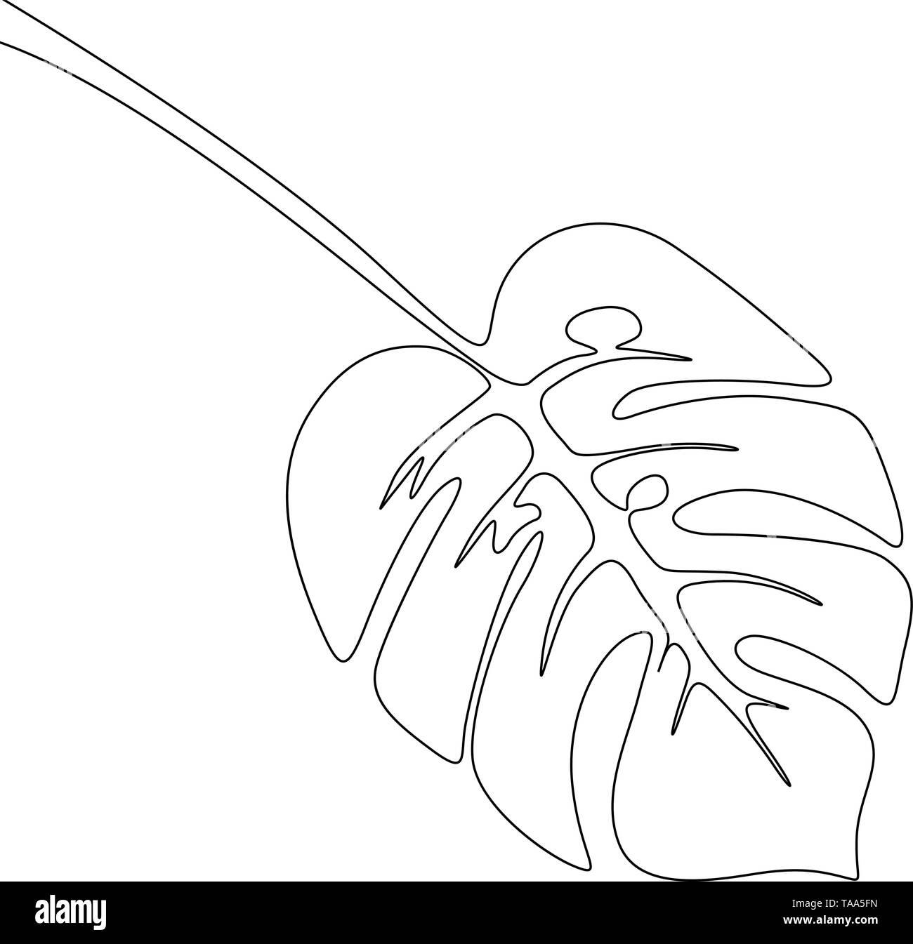 Eine Strichzeichnung monstera Zweig. Kontinuierliche Linie exotische tropische Pflanzen. Stockbild