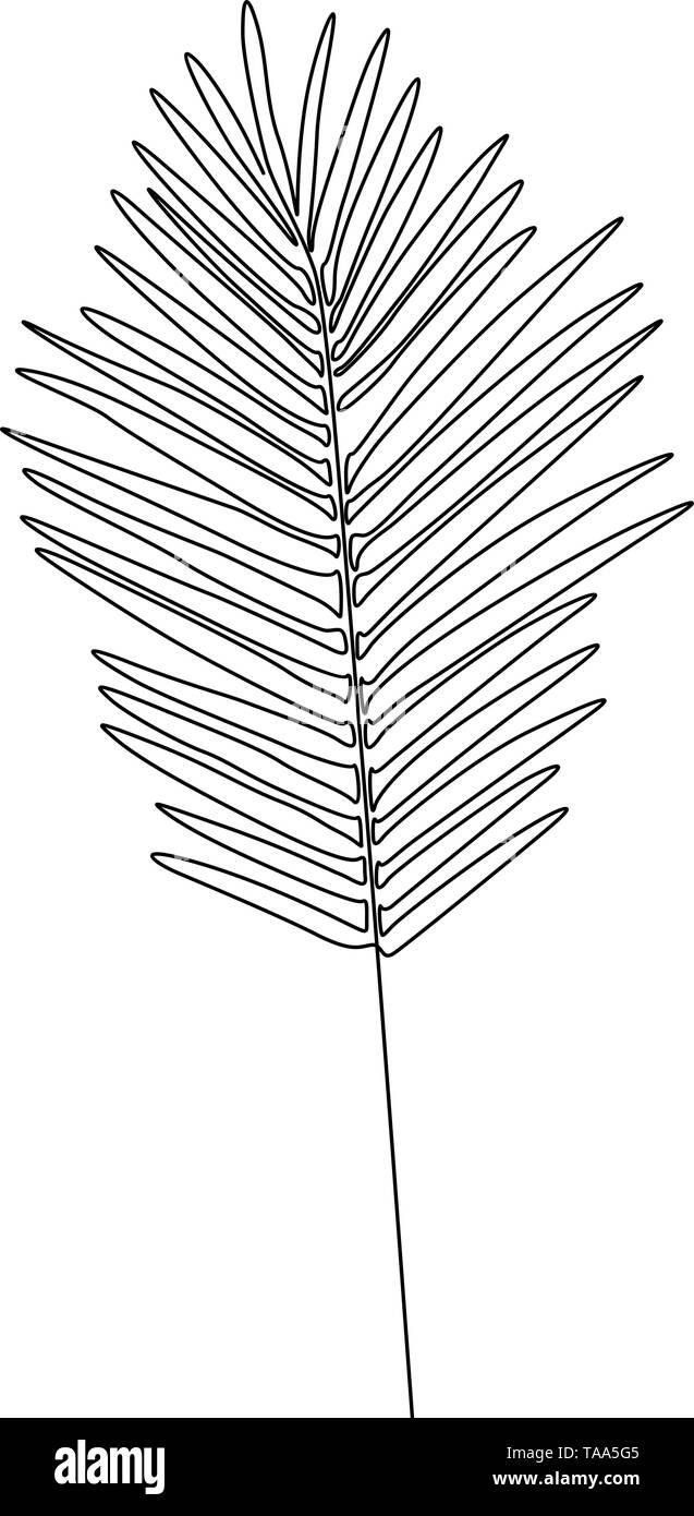 Eine Strichzeichnung areca palm leaf. Durchgehende Linie exotische tropische Pflanzen. Stockbild