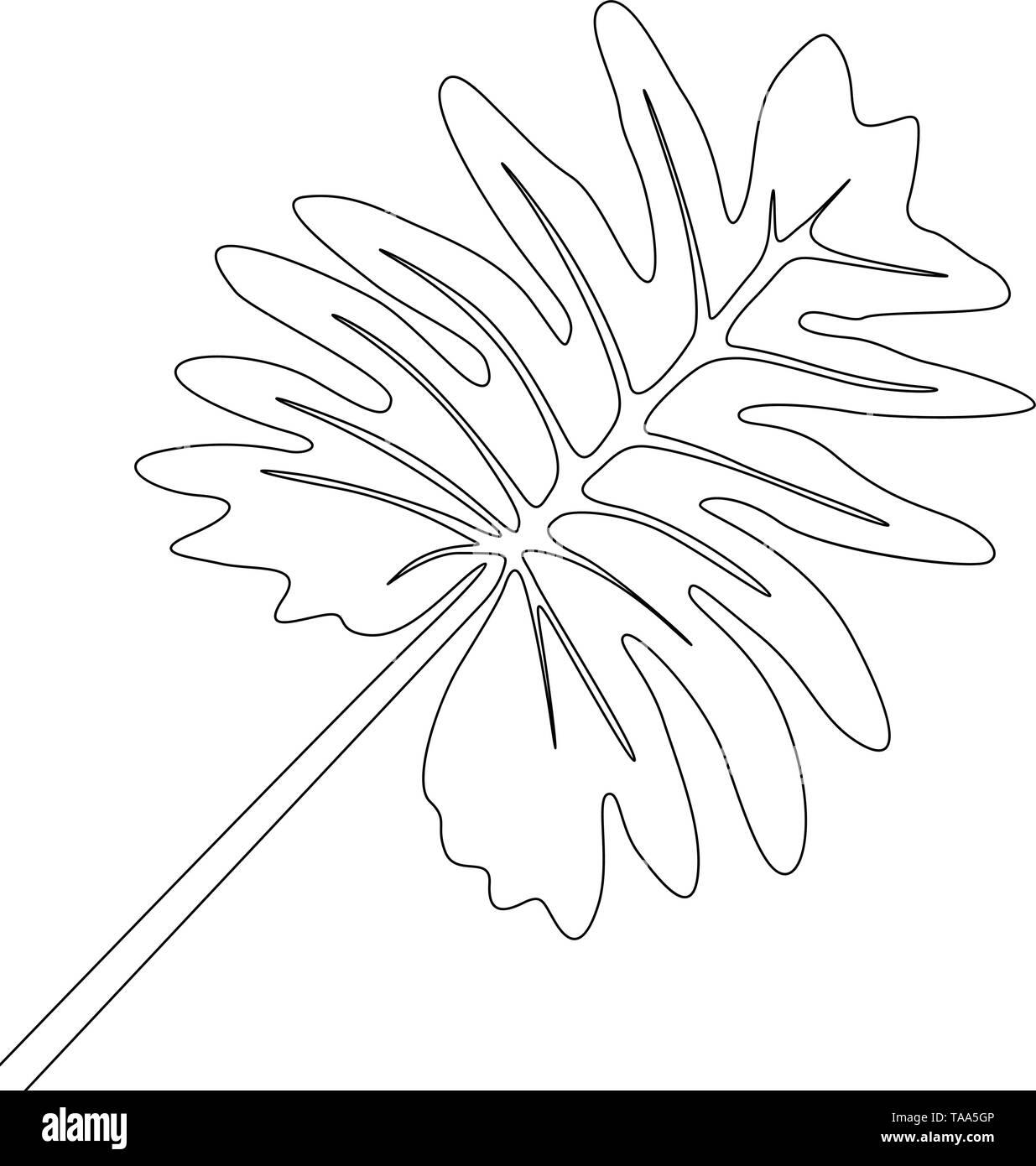 Eine Strichzeichnung tropischer Flora. Durchgehende Linie exotische tropische Pflanzen. Stockbild