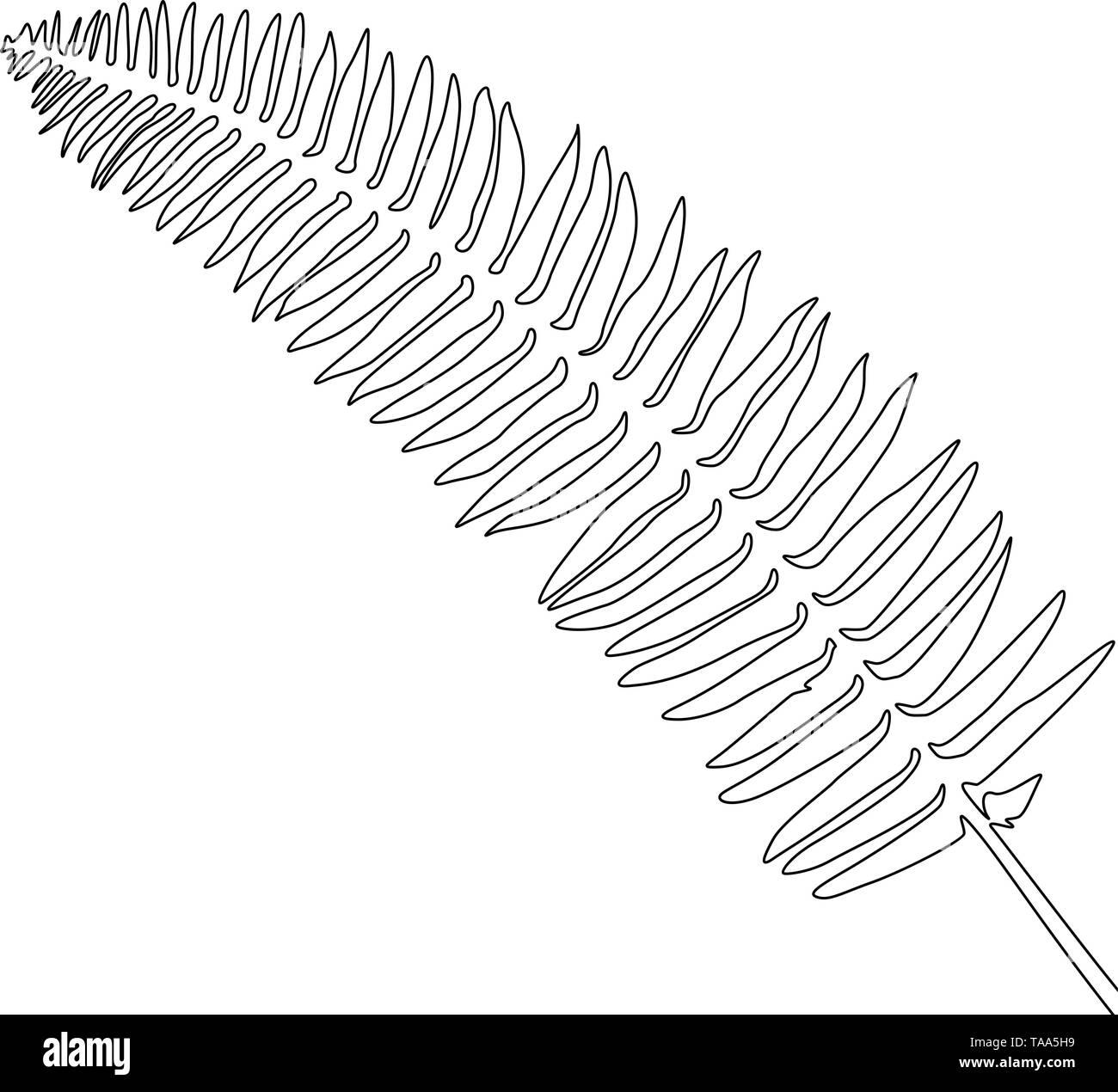 Eine Strichzeichnung Farn. Durchgehende Linie exotische tropische Pflanzen. Stockbild