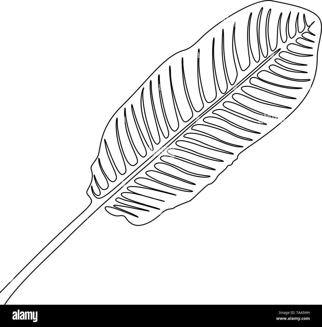 Eine Strichzeichnung banan Blatt. Durchgehende Linie exotische tropische Pflanzen. Stockbild